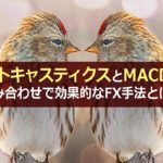 ストキャスティクスとMACDの組み合わせで効果的なFX手法とは?